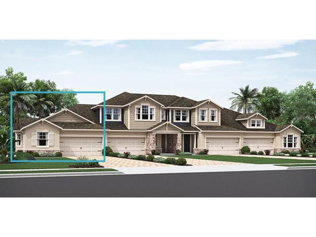 3681 Fescue Lane #82, Sarasota, FL 34232 (MLS #T2913595) :: Griffin Group