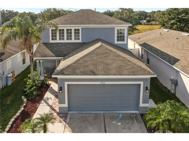 7914 Carriage Pointe Drive, Gibsonton, FL 33534 (MLS #T2913637) :: Dalton Wade Real Estate Group