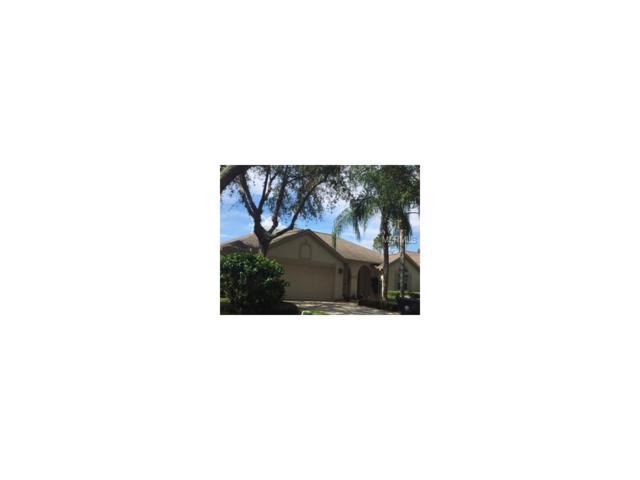 9420 Hunters Pond Drive, Tampa, FL 33647 (MLS #T2913752) :: Team Bohannon Keller Williams, Tampa Properties