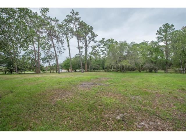 15205 Morris Bridge Road, Thonotosassa, FL 33592 (MLS #T2913791) :: Mark and Joni Coulter | Better Homes and Gardens