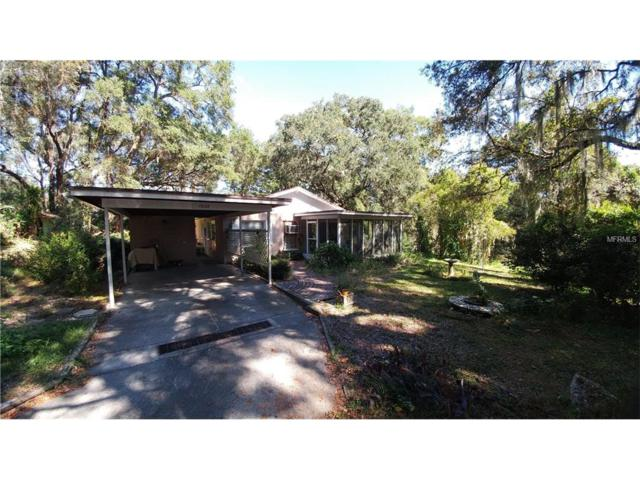 1608 W Windhorst Road, Brandon, FL 33510 (MLS #T2913792) :: Team Bohannon Keller Williams, Tampa Properties