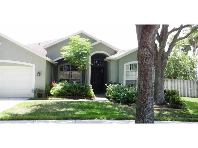 8509 Kings Rail Way, Tampa, FL 33647 (MLS #T2913879) :: Team Bohannon Keller Williams, Tampa Properties