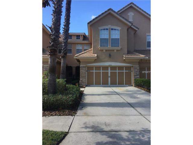 14441 Mirabelle Vista Circle, Tampa, FL 33626 (MLS #T2913888) :: Delgado Home Team at Keller Williams