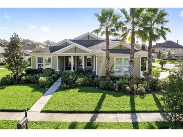 3220 Azure Sky Way, Wesley Chapel, FL 33544 (MLS #T2913905) :: Delgado Home Team at Keller Williams