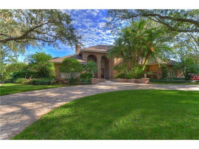 16303 Villarreal De Avila, Tampa, FL 33613 (MLS #T2913917) :: Team Bohannon Keller Williams, Tampa Properties