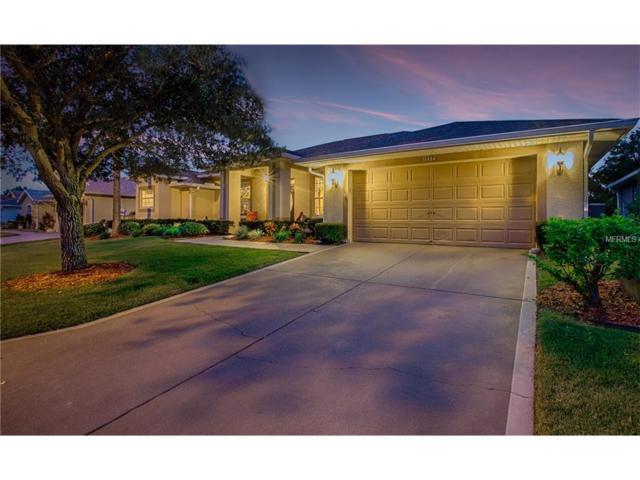 10404 Moshie Lane, San Antonio, FL 33576 (MLS #T2913942) :: Delgado Home Team at Keller Williams