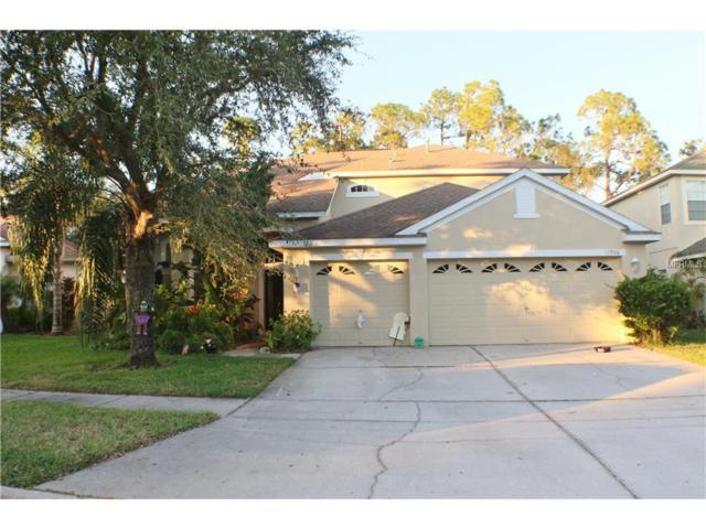11906 Northumberland Drive, Tampa, FL 33626 (MLS #T2913951) :: Team Bohannon Keller Williams, Tampa Properties