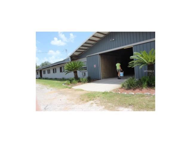 3007 Sunset Lane, Lutz, FL 33559 (MLS #T2913952) :: Griffin Group