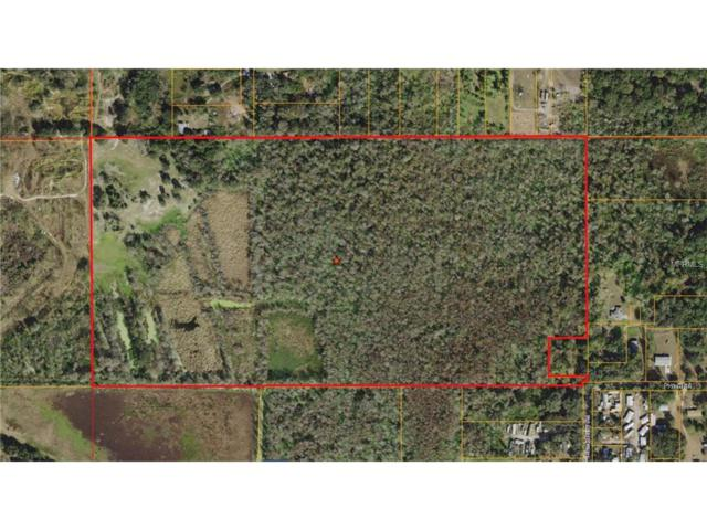 Black Dairy Road, Seffner, FL 33584 (MLS #T2913983) :: Team Bohannon Keller Williams, Tampa Properties