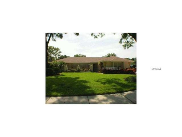 14501 Anchoret Road, Tampa, FL 33618 (MLS #T2914110) :: Delgado Home Team at Keller Williams