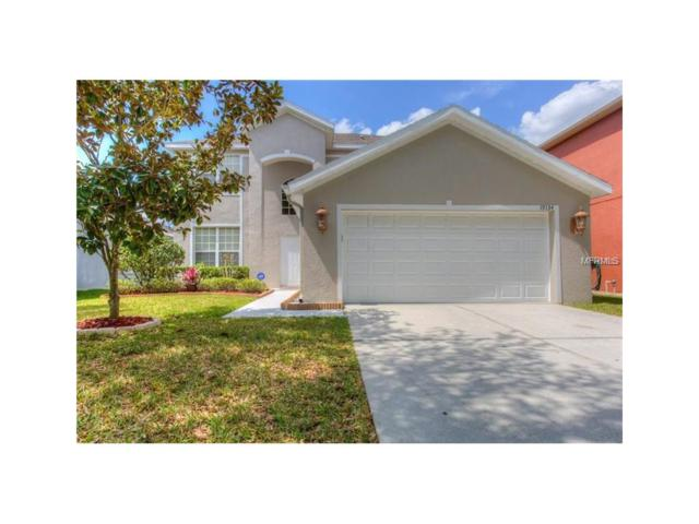 19134 Meadow Pine Drive, Tampa, FL 33647 (MLS #T2914121) :: Revolution Real Estate