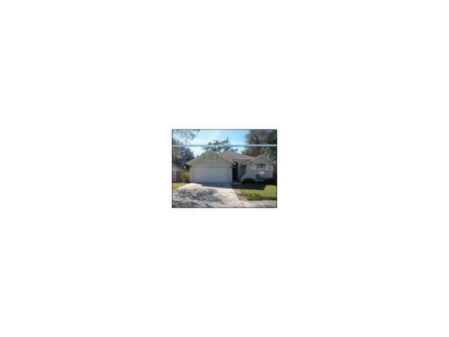 5839 Dorham Place, Wesley Chapel, FL 33545 (MLS #T2914129) :: Cartwright Realty