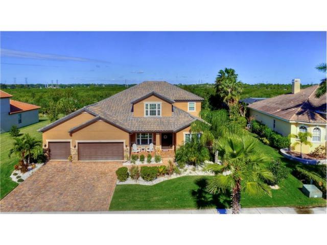 162 Mobbly Bay Drive, Oldsmar, FL 34677 (MLS #T2914194) :: Team Bohannon Keller Williams, Tampa Properties