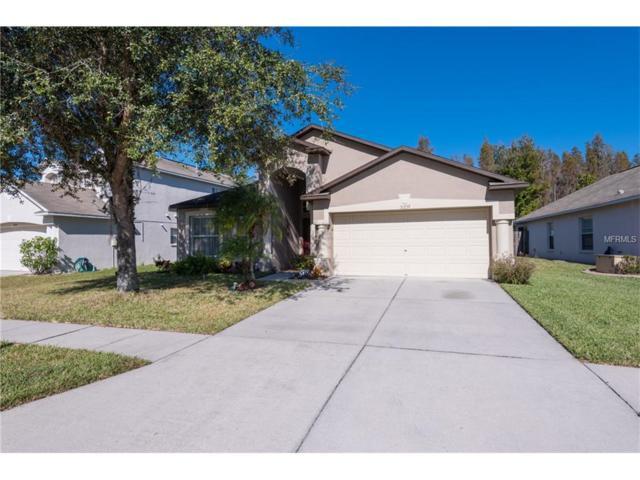 31239 Chatterly Drive, Wesley Chapel, FL 33543 (MLS #T2914212) :: Delgado Home Team at Keller Williams