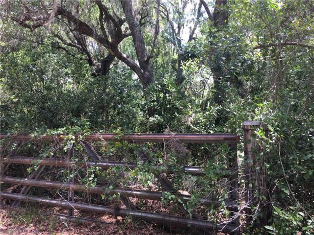 8504 Raiden Lane, Riverview, FL 33569 (MLS #T2914213) :: The Duncan Duo Team