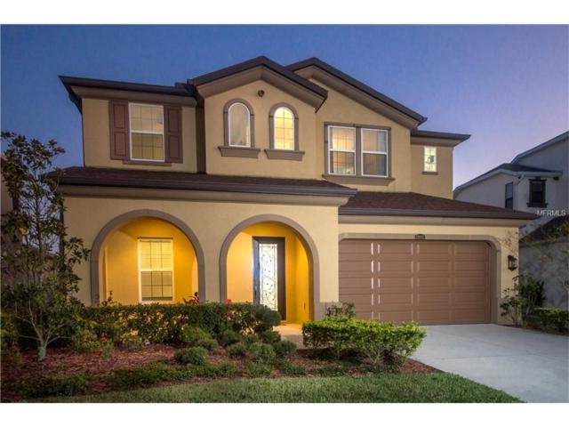 28892 Perilli Place, Wesley Chapel, FL 33543 (MLS #T2914221) :: Delgado Home Team at Keller Williams