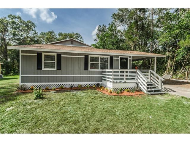18812 Carr Drive, Lutz, FL 33559 (MLS #T2914264) :: Griffin Group
