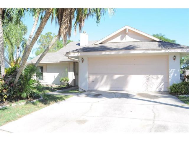 1625 Bent Pine Way, Brandon, FL 33511 (MLS #T2914317) :: Delgado Home Team at Keller Williams