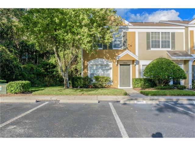 29945 Playa Del Rey Lane, Wesley Chapel, FL 33543 (MLS #T2914387) :: RealTeam Realty