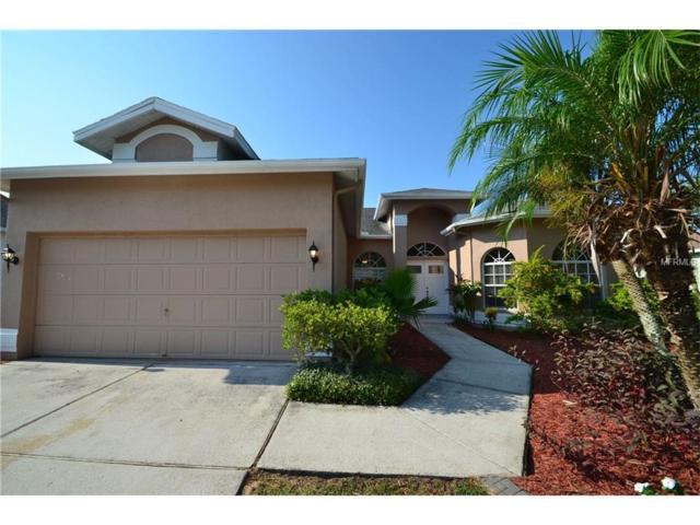 28234 Brokenmead Path, Wesley Chapel, FL 33543 (MLS #T2914404) :: Team Bohannon Keller Williams, Tampa Properties