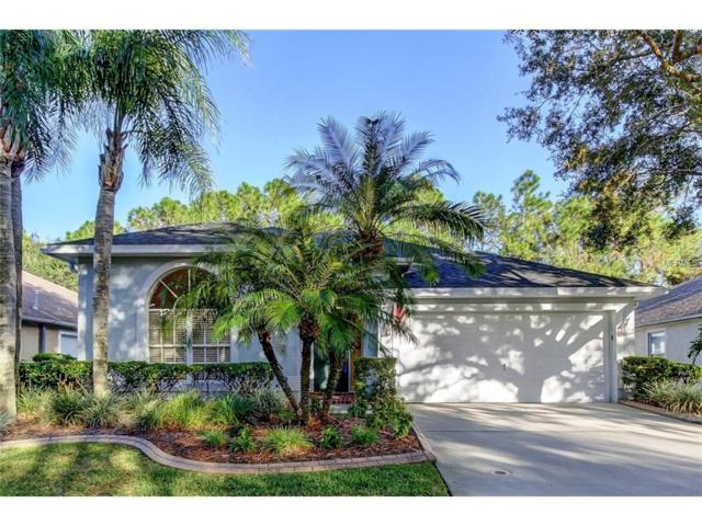 11739 Derbyshire Drive, Tampa, FL 33626 (MLS #T2914438) :: Griffin Group