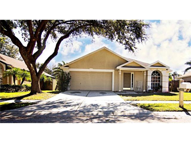 28526 Meadowrush Way, Wesley Chapel, FL 33543 (MLS #T2914468) :: Delgado Home Team at Keller Williams