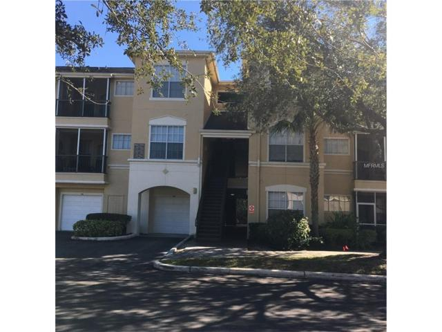 5125 Palm Springs Boulevard #4206, Tampa, FL 33647 (MLS #T2914471) :: Cartwright Realty
