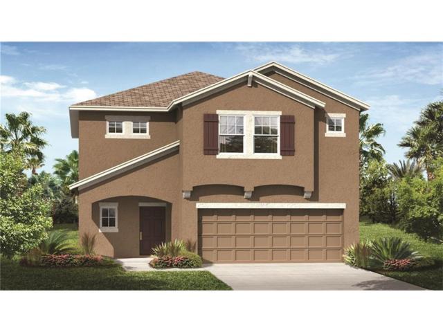 4129 Beeswax Lane, Land O Lakes, FL 34638 (MLS #T2914488) :: Delgado Home Team at Keller Williams