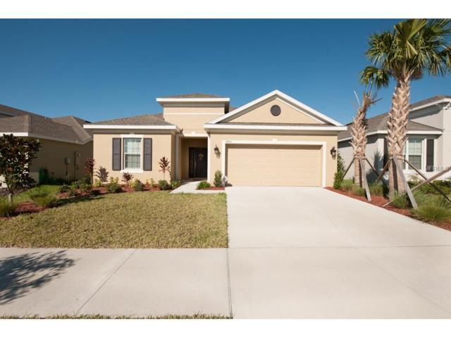 8204 Belle Grove Court, Riverview, FL 33578 (MLS #T2914512) :: KELLER WILLIAMS CLASSIC VI