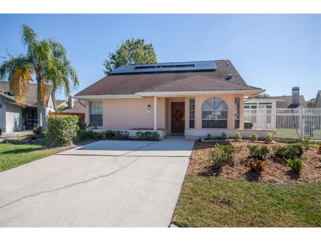 11604 Autumn Gardens Court, Tampa, FL 33635 (MLS #T2914513) :: Revolution Real Estate