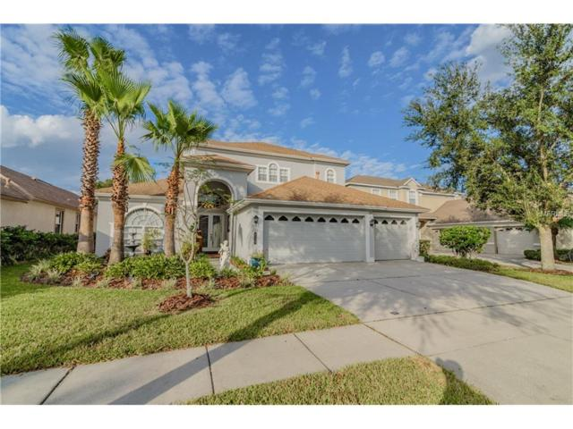 8318 Old Town Drive, Tampa, FL 33647 (MLS #T2914517) :: Revolution Real Estate