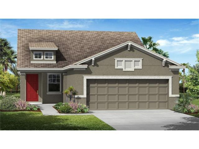 3472 Sagebrush Street, Harmony, FL 34773 (MLS #T2914532) :: Godwin Realty Group