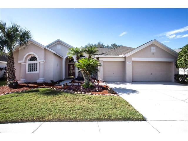 1522 Crooked Stick Drive, Valrico, FL 33596 (MLS #T2914577) :: Griffin Group