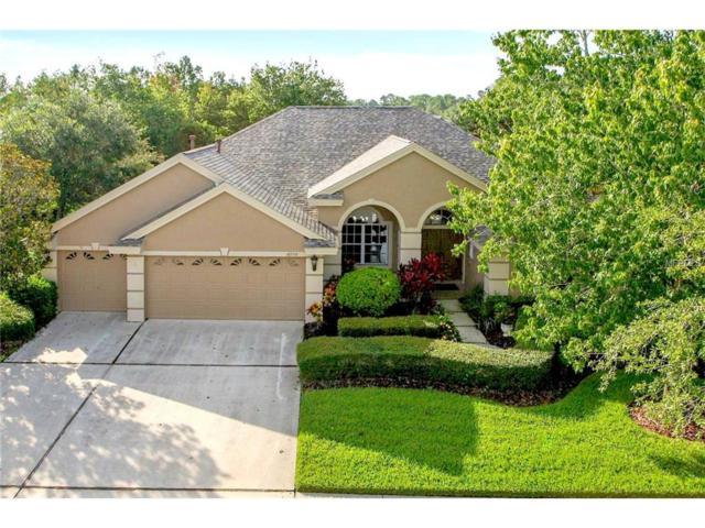 10556 Greencrest Drive, Tampa, FL 33626 (MLS #T2914595) :: Team Bohannon Keller Williams, Tampa Properties