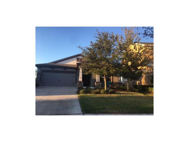 6339 Hawk Grove Court, Wesley Chapel, FL 33545 (MLS #T2914602) :: Delgado Home Team at Keller Williams