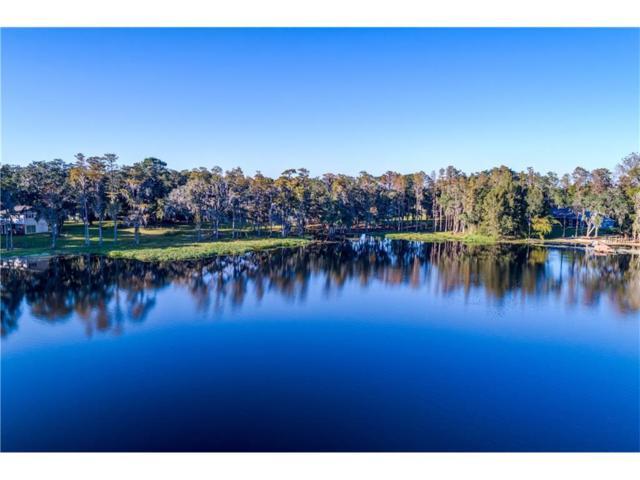 16150 Armistead Lane, Odessa, FL 33556 (MLS #T2914645) :: Team Bohannon Keller Williams, Tampa Properties