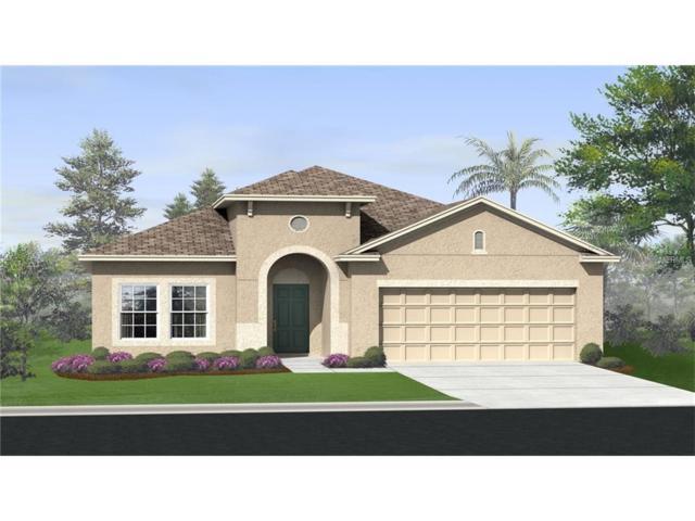 3349 Sagebrush Street, Harmony, FL 34773 (MLS #T2914685) :: Godwin Realty Group