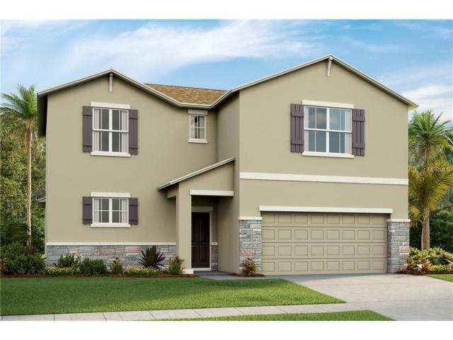 11418 Warren Oaks Place, Riverview, FL 33578 (MLS #T2914692) :: Delgado Home Team at Keller Williams