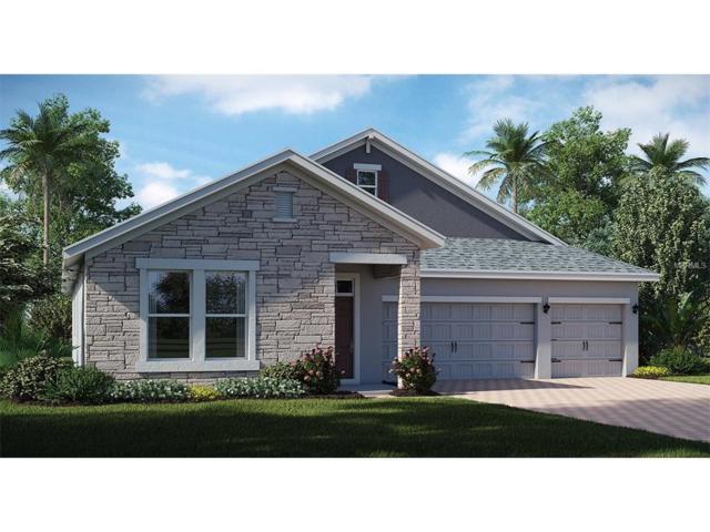 10253 Lovegrass Lane, Orlando, FL 32832 (MLS #T2914724) :: Godwin Realty Group