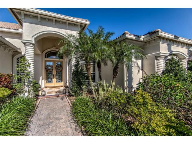 10842 Barbados Isle Drive, Tampa, FL 33647 (MLS #T2914738) :: Cartwright Realty