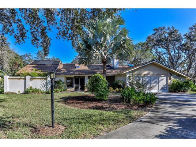 5587 Cactus Circle, Spring Hill, FL 34606 (MLS #T2914749) :: Revolution Real Estate