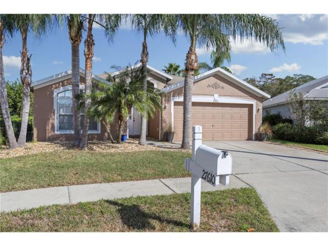 27610 Sugar Loaf Drive, Wesley Chapel, FL 33544 (MLS #T2914759) :: Team Bohannon Keller Williams, Tampa Properties