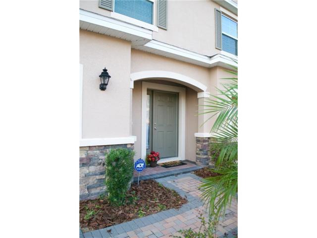 3751 Silverlake Way, Wesley Chapel, FL 33544 (MLS #T2914760) :: Team Bohannon Keller Williams, Tampa Properties