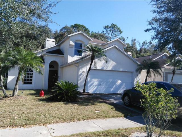 1610 Firewheel Drive, Wesley Chapel, FL 33543 (MLS #T2914761) :: Team Bohannon Keller Williams, Tampa Properties