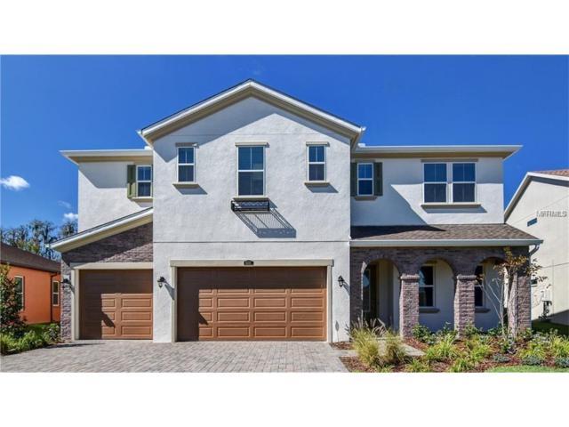 4311 Ortona Lane, Wesley Chapel, FL 33543 (MLS #T2914791) :: Team Bohannon Keller Williams, Tampa Properties