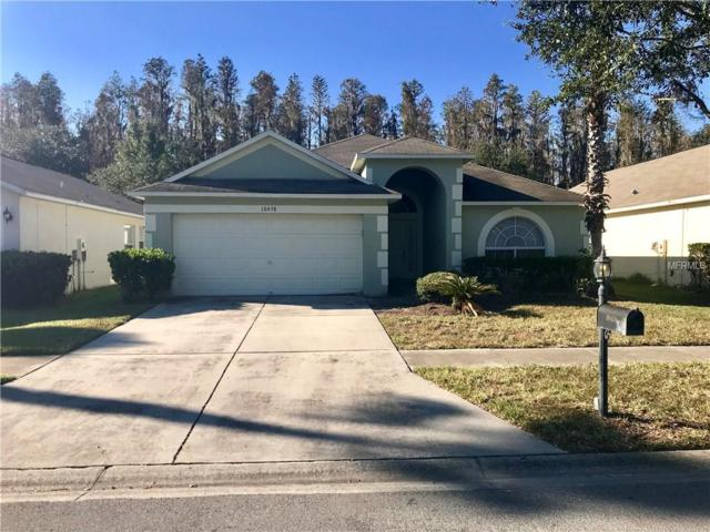 10458 Lucaya Drive, Tampa, FL 33647 (MLS #T2914793) :: Cartwright Realty