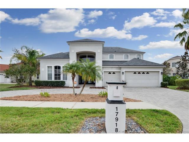 17918 Bahama Isle Circle, Tampa, FL 33647 (MLS #T2914843) :: Team Bohannon Keller Williams, Tampa Properties