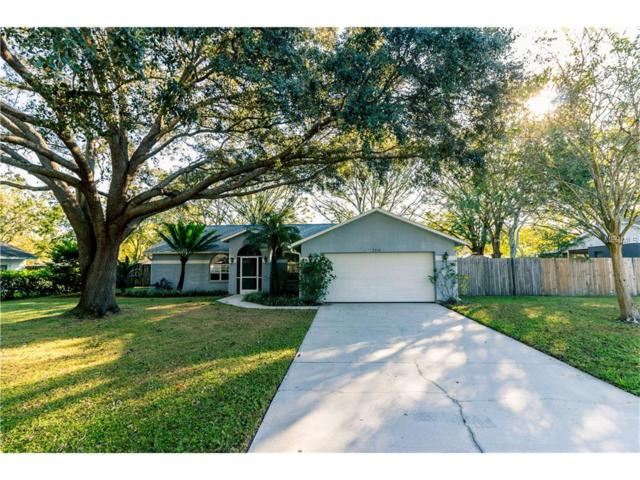 3818 Forest Park Place, Land O Lakes, FL 34639 (MLS #T2914847) :: Cartwright Realty