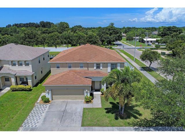 432 Chimney Rock Drive, Ruskin, FL 33570 (MLS #T2914901) :: Dalton Wade Real Estate Group