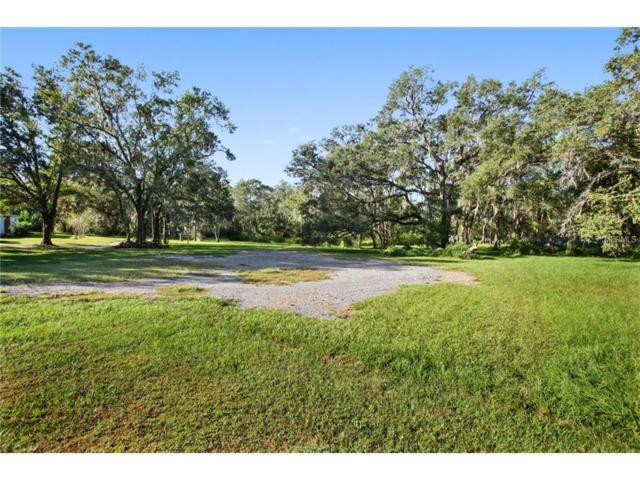29300 Chapel Park Drive, Wesley Chapel, FL 33543 (MLS #T2914911) :: Cartwright Realty